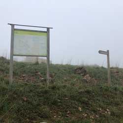 cartel informativo de la excursión a la cocuta